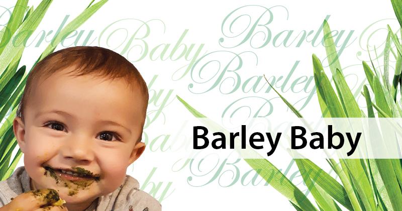 Barley Baby